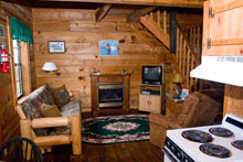 lake homes sale murphy for nc cabins hiawassee in listingslakehomeshiawassee mountains georgia residential