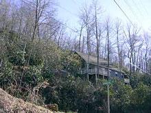 Mountain Laurel Nantahala North Carolina