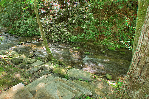 cabin creek hindu singles Indian creek campground is the premier cherokee north caorlina camping experience offering pet friendly vacation rentals cherokee nc and rental cabins.